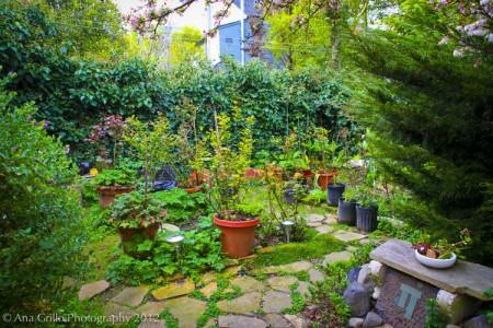 Garden.5