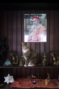 Madhuri.with.Guruji